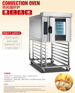 Electric Convection Oven (YL-5D) pictures & photos