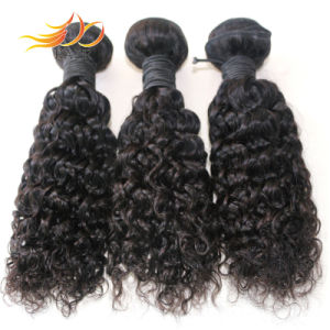 8A High Quality Jerry Curl Weft Brazilian Virgin Human Hair pictures & photos