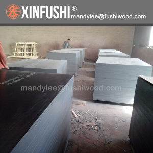 As2269 F17 Plywood for Australia Market pictures & photos
