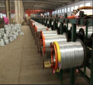 China Manufacturer 16gauge 25kg Binding Wire/Galvanized Wire to Asia pictures & photos