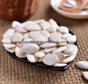 New Crop Best Quality Snow White Pumpkin Seeds pictures & photos
