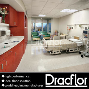 Hospital Use Vinyl Flooring Roll (F-1405) pictures & photos