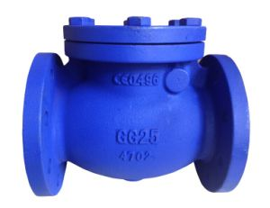 DIN F6 Swing Check Valve pictures & photos