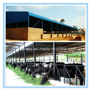 High Quality Modern Steel Frame Livestock House pictures & photos