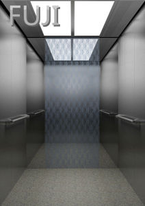 Passenger Elevator / Lift Two Colour to Choice pictures & photos
