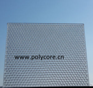 Polycarbonate Honeycomb Panel pictures & photos