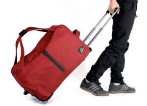 Travel Trolley Bag (YLD1221-16)