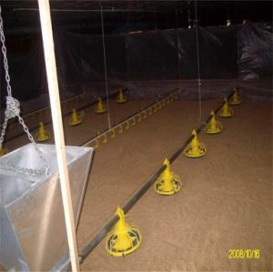 Full Automatic Chicken Poultry Farm Equipment pictures & photos