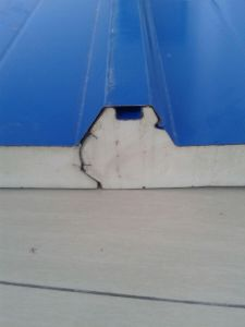 Light Weight Sandwich Panel for Roof pictures & photos