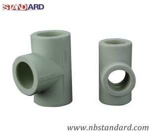 PPR/Tee Fitting/PPR Pipe/PPR Fitting/Equal Tee/Tube