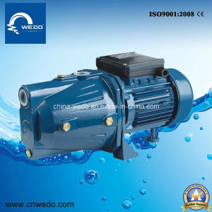 Jet-80L Self-Priming Water Pumps for Irrigation 0.55kw/0.75HP 1inch Outlet pictures & photos