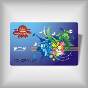 Staff Card (LBD-PVC-10)
