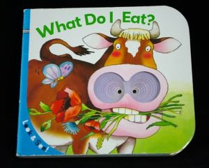 What Do I Eat Book