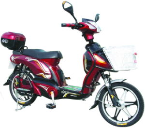 E-Bike (Lead-Acid Battery)