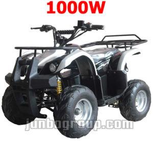 E ATV, 500W Electric Quad Bike, E Powered, 500W ATV Bike (DR106)
