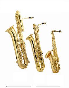Bass / Bariton /Tenor Saxophone