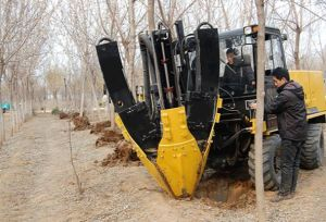 Tree Spade for Skid Loader Attachments pictures & photos