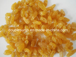 Dried Seedless Golden Raisin
