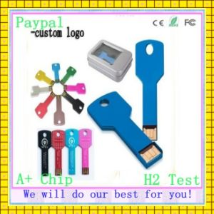 H2- Test Gift Key-Shaped USB Flash Drive (GC-K356) pictures & photos