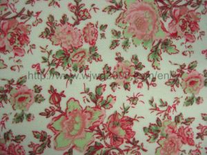 Cotton Fabric (C Print 015) Linen pictures & photos