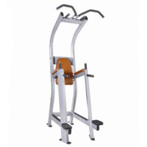 CE Certificated Nautilus Strength Machine / Chin-DIP Leg Raise (SW-2020) pictures & photos