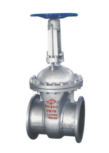 DIN Gate Valve, Cast Steel Gate Valve, Gate Valve pictures & photos