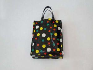 PP Non Woven Bag pictures & photos