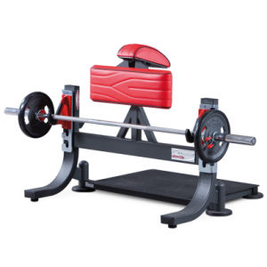 Professional Panatta Gym Equipment, Multimotion Bench (SF1-3077) pictures & photos