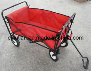 Collapsible Sports Wagon