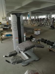 Freemotion Gym Equipment Abdominal Bench (SZ30) pictures & photos