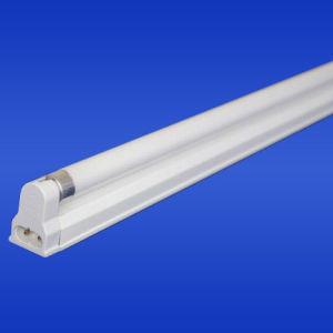 T5 Fluorescent Lamp