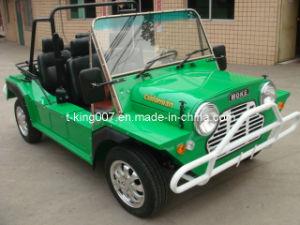 Electric Moke Car
