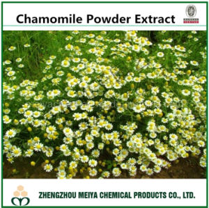 GMP Factory Supply Natural Chamomile Powder Extract with Apigenin 98% pictures & photos