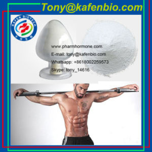 CAS 76822-24-7 Anabolic Steroid Hormone 1- Androsterone Androgen 1- DHEA