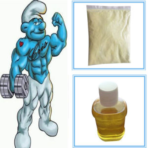 Hormone Powder Trenbolone Enanthate 99%Min CAS No.: 472-61-546 pictures & photos