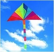 Sky Kite - Delta Kite Sk002 pictures & photos