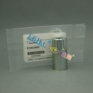 E1022002 Erikc Oil Fuel Injector Nozzle Cap Nut pictures & photos