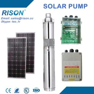 China DC Submersible Solar Pump Price (5 Years Warranty) pictures & photos