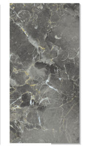 Polished Wall Tile 300X600mm Fr36069A pictures & photos