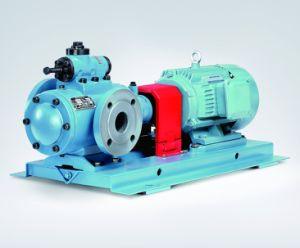 Oil Pumps for Power Plants pictures & photos