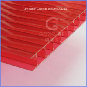 Grade a 4mm/5mm/6mm/8mm/10mm Twin Wall Polycarbonate Hollow Sheet pictures & photos