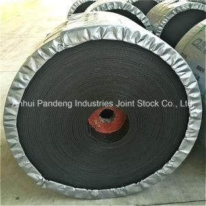 Conveyor Belt/Nylon Conveyor Belt with Fire Resistance/Conveyor Belt Manufacturer pictures & photos
