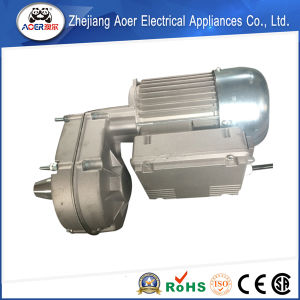 AC Single-Phase High Torque Low Speed 4 Poles Gear Electric Motor China pictures & photos