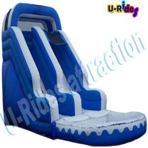8 Meter Long Doubel Inflatable Slide with Pool pictures & photos
