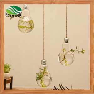 Light Bulb Shaped Hanging Glass Vase pictures & photos