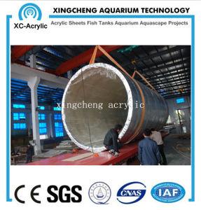 Transparent Acrylic Aquarium of Aquarium Project pictures & photos