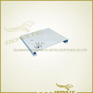 Acrylic Products Imitation Porcelain Series for Hotel pictures & photos