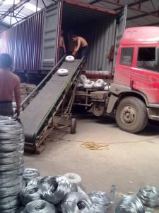 Bwg 22 Galvanized Iron Binding Wire 8kgs/Roll Export Saudi Arabia pictures & photos