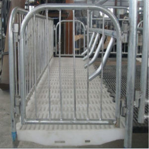 Hot DIP Galvanizing Steel Enclosure for Pig Breeding pictures & photos