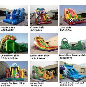 0.55mm PVC Tarpaulin Outdoor Vivid Chameleon Inflatable Slide pictures & photos